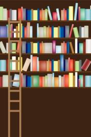 A writer's bookshelf